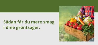 Sådan får du dine grøntsager til at smage bedre.